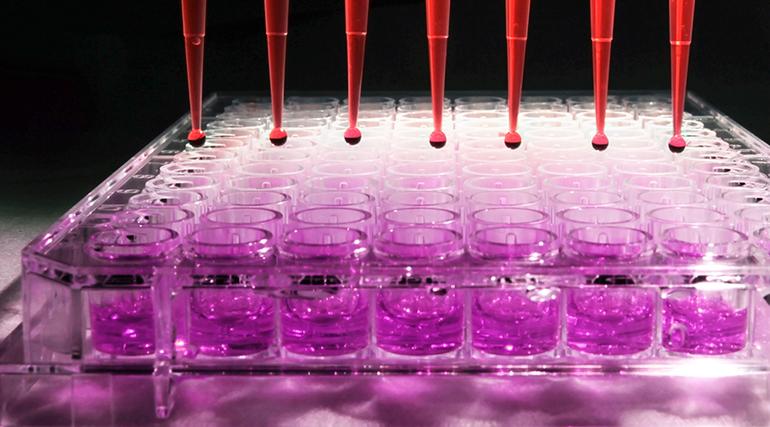 Merck, startups, biotecnología