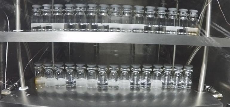 Método de inducción de nucleación por vacío en liofilización