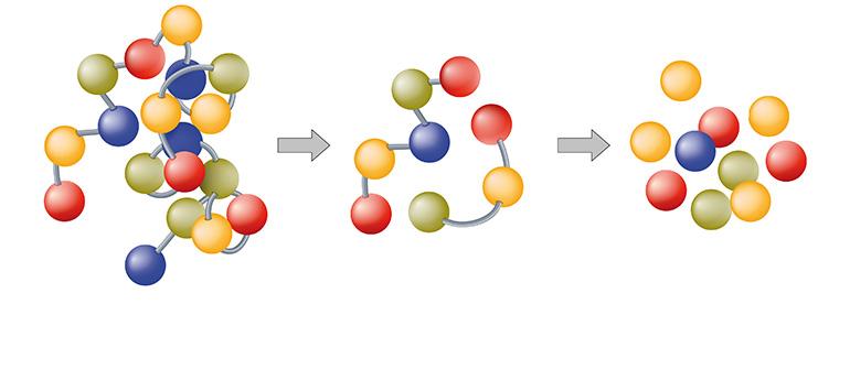 Péptidos bioactivos y su implicación en el tratamiento y diagnóstico de enfermedades y la vehiculización de fármacos