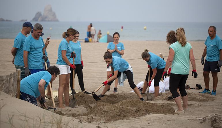 Trabajadores de Ferrer participan en tareas de recuperación de las dunas del Parque Natural del Montgrí