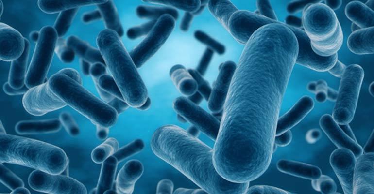 Vytrus Biotech y Gaiker consiguen financiación pública para I+D en tratamientos para la piel de origen vegetal