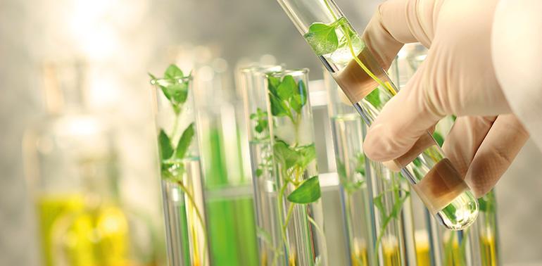 La Estrategia de Control de la Contaminación en el marco del nuevo Anexo 1 GMP
