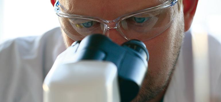 Lectinas en tecnología farmacéutica: excipiente o fármaco